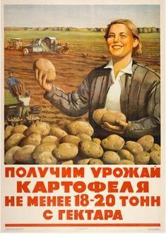 Une honnête travailleuse soviétique qui promet une récolte de 18 à 20 tonnes de patates par hectare